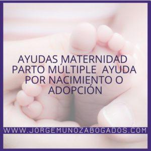 Ayudas Maternidad – Parto Múltiple – Ayuda por Nacimiento o Adopción